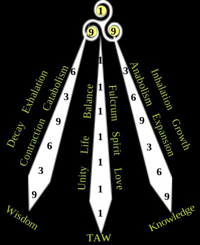SpiralAwen3